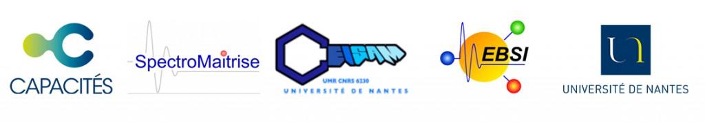 Web bandeau logo spectromaitrise